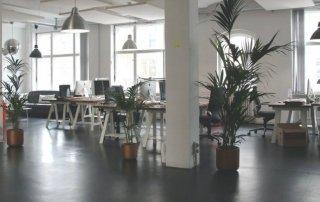 Unternehmen Transparenz GmbH Firmenauskunft